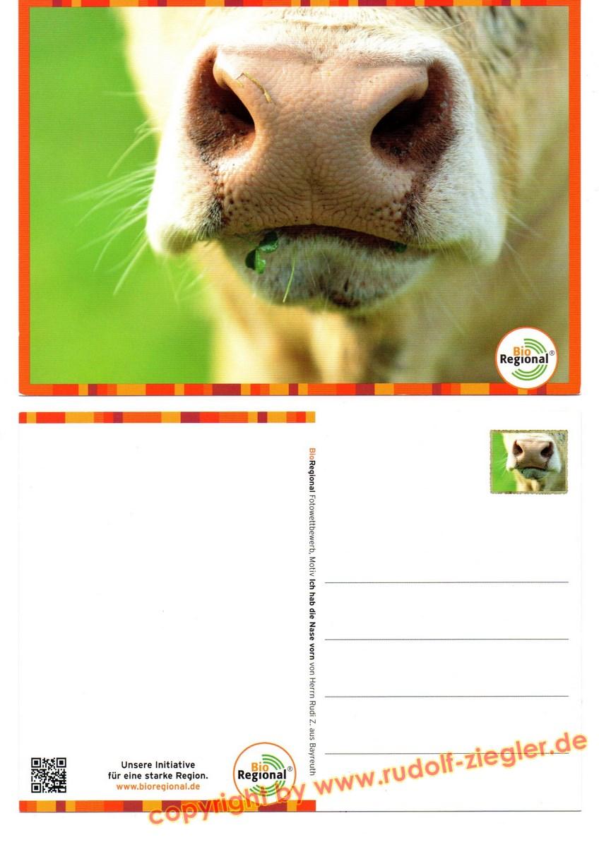 BIO REGIONAL - Postkarte-A (1600x1200)