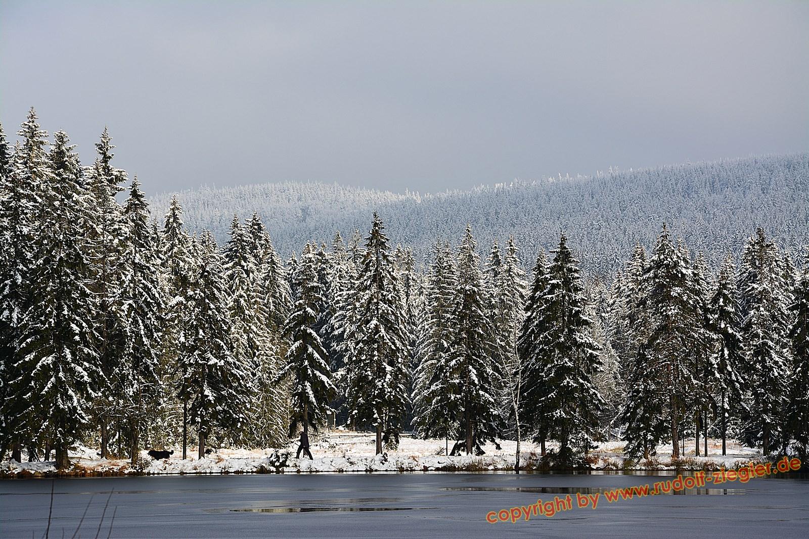 Schnee am Fichtelsee 034-Bearb (1600x1200)