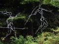 Botanischer Garten Bayreuth 035 [2500x2100]